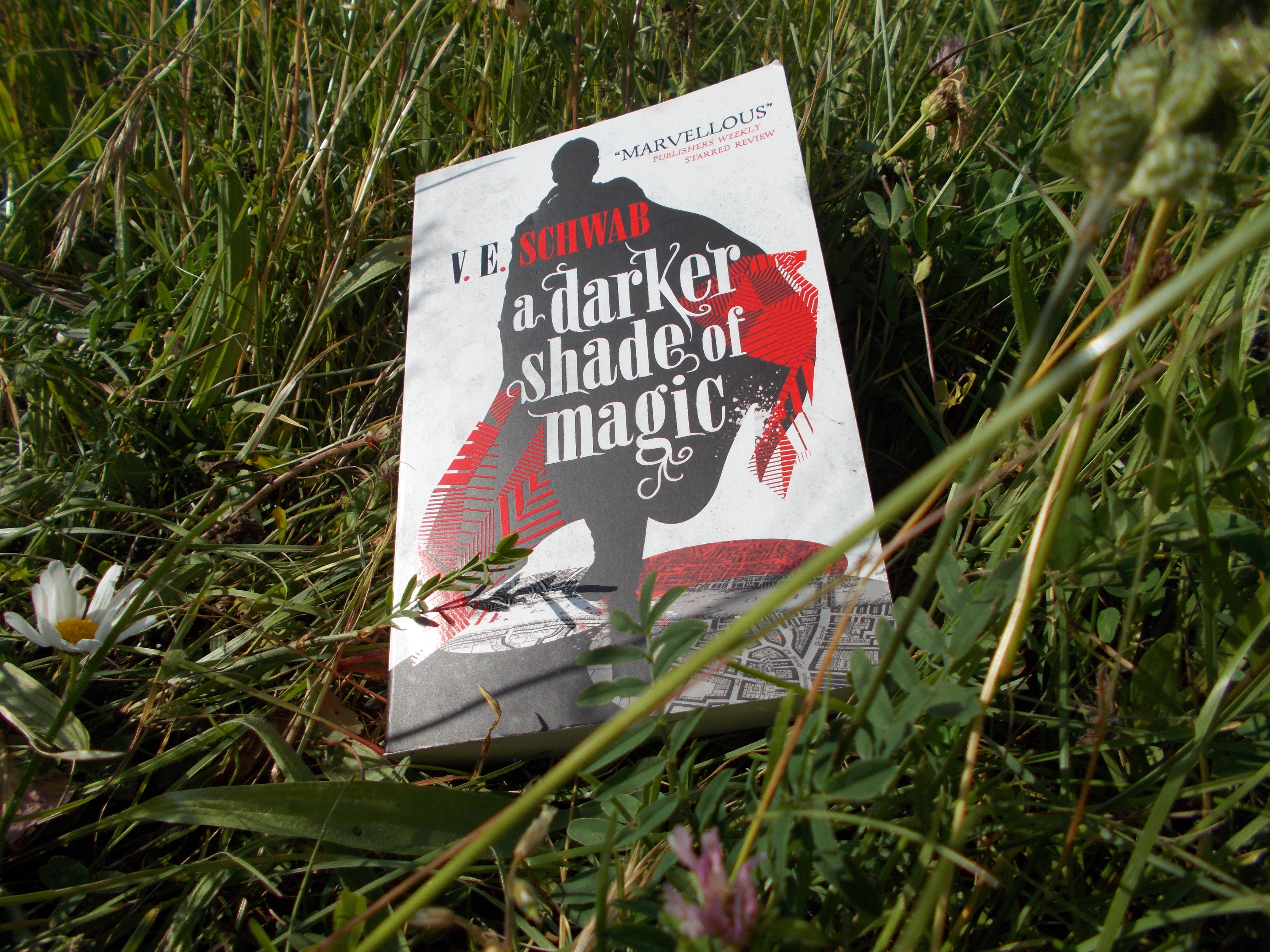 A Darker Shade of Magic by VE Schwab.
