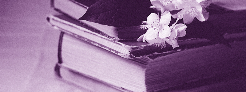 A stack of old books topped with a sprig of white blossom.
